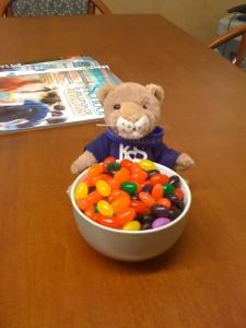 KCS Jellybeans