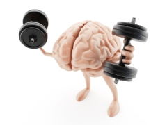 Working the brain