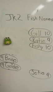 Naming our fish