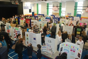 Primary Project Fair