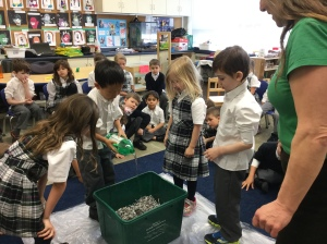 Vermi-composting in Senior Kindergarten