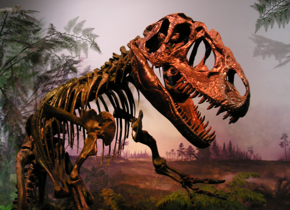 ROM-DinosaurDisplay-May9-04